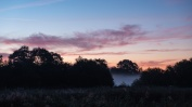 Westhay sunrise-3369