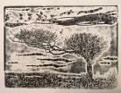 Exmoor tree-1
