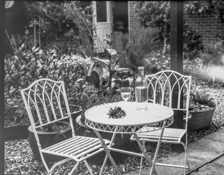 Garden_PsPos_Oct5th2019-Wordpress-1