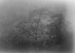 Misty Mendip-3-