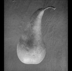 Pear-KBPaperNo3_F45_5hrs_600dpi