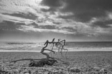 Seaton_beach-3